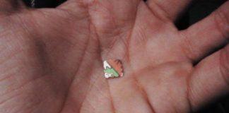 TIRRENO COSENTINO / Droga, è allarme consumo di eroina e LSD tra i giovani
