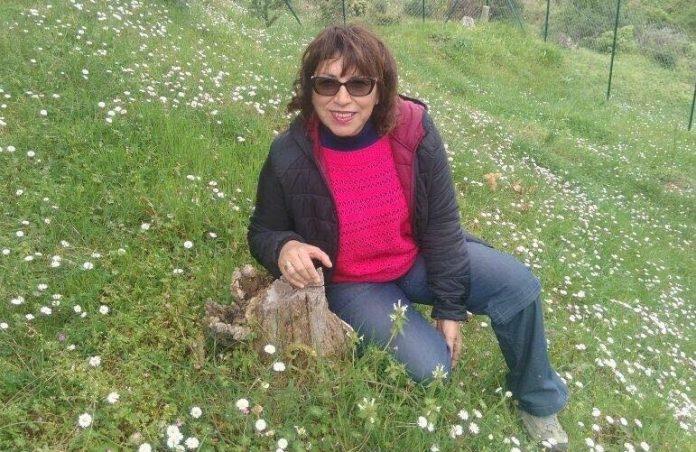 Calabria | Scuola, la denuncia di un'insegnante: 'Sfrattata perché tutti i posti assegnati ai fruitori della 104'