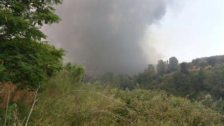 Nel Cosentino incendio devasta area boschiva e raggiunge discarica: fuoco domato ma l'aria è irrespirabile