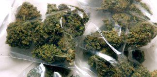Paola (Cs) | Arrestato pregiudicato 32enne, nascondeva 90 grammi di marijuana in casa