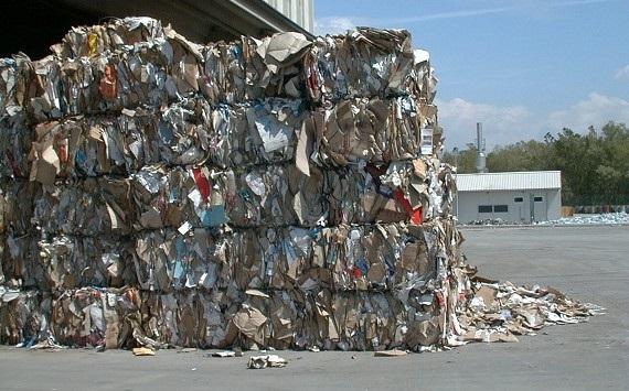Diamante (Cs)   Il consigliere Cauteruccio interroga il sindaco sulla gestione economica dei rifiuti