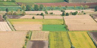 Vibo Valentia | Truffa su agevolazioni fondi Ue, 10 denunce e sequestri beni per 300mila euro