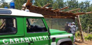Aspromonte | Soppresso bosco nel Parco per piantagione colture, sequestrati 15mila mq di terreno