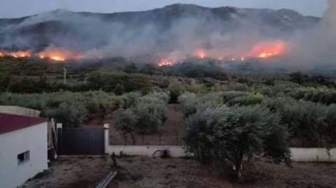 Scalea (Cs) brucia nella sera della festa in onore della Madonna del Carmelo