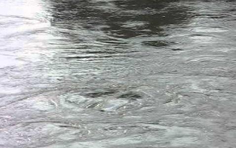Santa Domenica Talao (Cs) | Carenza idrica, individuate delle grosse perdite d'acqua a località Cerri