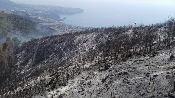 Incendi a Praia a Mare, le conseguenze della follia umana sul Monte Saracinello - LE IMMAGINI