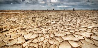 Calabria | La Sorical lancia l'allarme: 'Non piove da mesi, in provincia di Cosenza stato di siccità severa e grave'