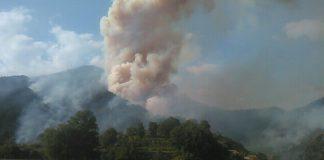 Ancora incedi sull'alto Tirreno cosentino, Tortora brucia per 'autocombustione'