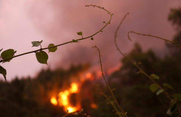 Santa Domenica Talao brucia pericolosamente e le istituzioni sovracomunali dormono