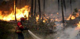 Incendi a Castiglione Cosentino, l'accorato appello del capogruppo Pd Francesco Librandi