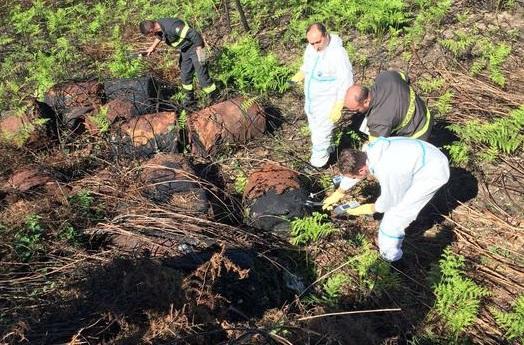 Calabria, trovati 25 bidoni sotterrati: la Procura avvia le indagini
