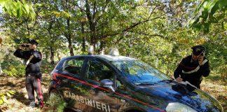 Campana (Cs), ritrovato dai carabinieri anziano scomparso da una casa di riposo
