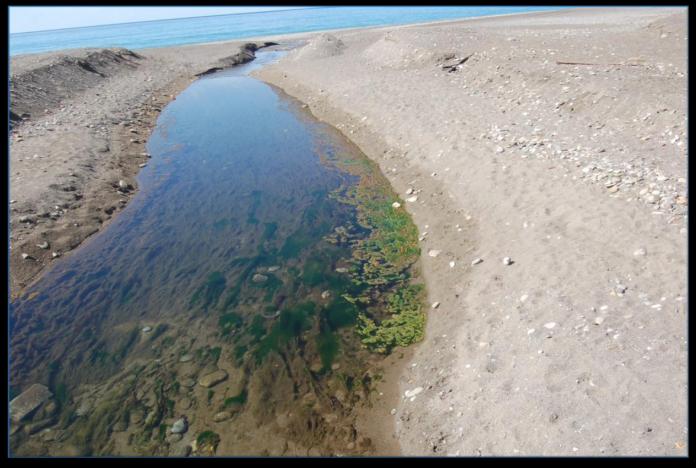 Inquinamento del canale Fiumarella di Praia a Mare, il dossier di Italia Nostra