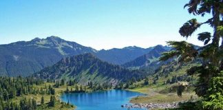 Il Parco Nazionale della Sila rilancia la candidatura a patrimonio dell'umanità Unesco