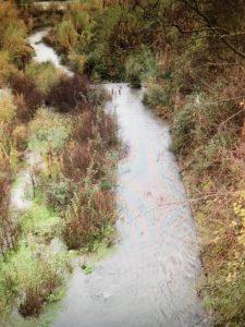 fiume Follone