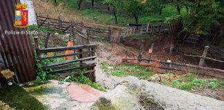 Calabria: acque reflue nel fiume, chiuso allevamento