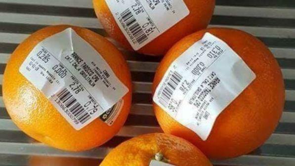Sacchetti della frutta a pagamento, sui socialè bufera