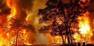 Incendi, prima che arrivi il peggio