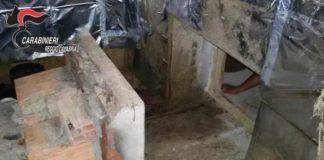 Platì, bunker adibito a serra della droga nella cantina di un casolare