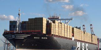 A Gioia Tauro la Msc Maya, tra le più grandi navi che abbiano mai toccato l'Italia