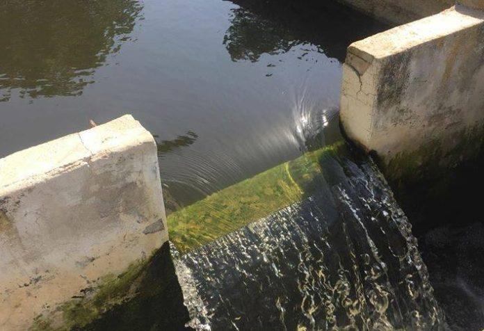 Nuove analisi della acque: allo sbocco del fiume Abatemarco nessun batterio nocivo