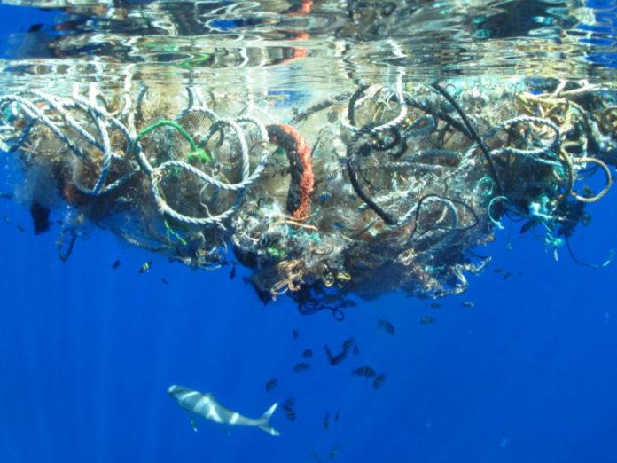 Plastiche in mare, se ne discute a Praia a Mare venerdì con Laura Ferrara ed esperti
