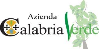 Inchiesta Calabria Verde, rinvio a giudizio anche per Oliverio, Iacucci e Trematerra