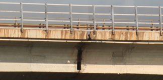 Ponte di San Nicola Arcella, Italia Nostra scrive all'Anas