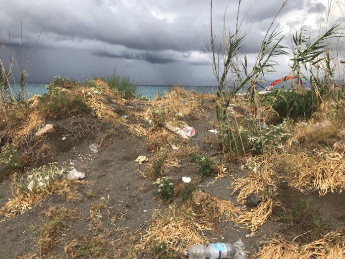 Praia a Mare, Italia Nostra: «Una spiaggia abbandonata all'incuria ed al degrado»