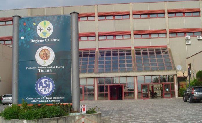 Melicchio: «La gestione partitica ha spolpato la Fondazione Terina»