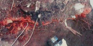 Disastro ambientale dell'area Marlane: la cessione dei terreni una 'beffa' ai cittadini