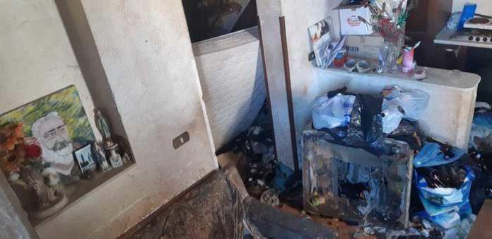 Cani denutriti, salvati dai vigili di Reggio Calabria
