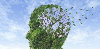 «Catanzaro e la sanità delle mele marce: giornata dell'Alzheimer sottotraccia»