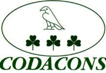 Codacons: «Accesso su assunzioni 'strettamente collegate con rappresentanti istituzionali'»