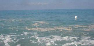 Scalea (Cs) | Mare sporco, comunicato del sindaco: 'Macchie provenienti da altri siti per correnti marine'