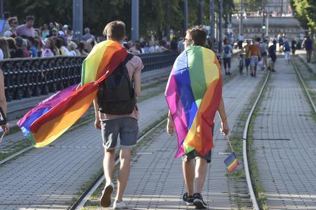 'Non affittiamo a gay e ad animali', coppia in vacanza respinta in Calabria