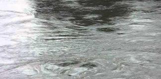 Santa Domenica Talao (Cs)   Carenza idrica, individuate delle grosse perdite d'acqua a località Cerri