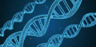 Da Wired | Gli Stati Uniti approvano la prima terapia genica contro la leucemia