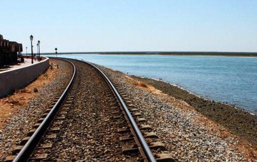 Raffaele Papa scrive alla Regione Calabria: «Istituiamo un 'Alto Tirreno Express'»